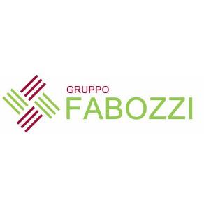 Logo Gruppo Fabozzi - Dimar Service